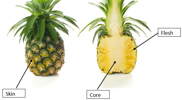 which parts of pineapple can dog eat