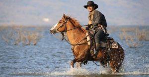 Western Horse Names