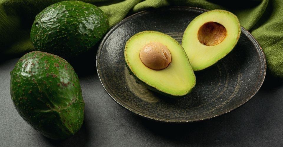 Can Cats Eat Avocado-keeping-pet
