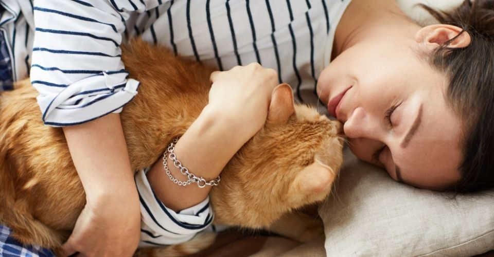 What does it mean when your cat sleeps on you